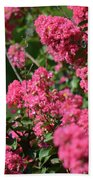 Crepe Myrtle Blossoms 2 Beach Towel