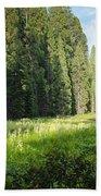 Crescent Meadow In Sequoia Beach Towel