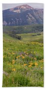 Crested Butte Valley Beach Towel