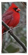 Crimson Cardinal Beach Towel