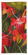 Crimson Light Beach Towel