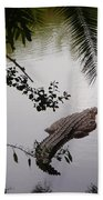Croco Beach Towel