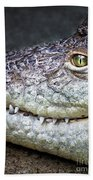 Crocodile Eye Beach Towel