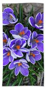 Crocus 6675 Beach Towel