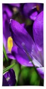 Crocus Amongst Us Beach Towel