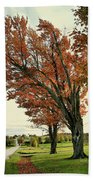 Crooked Tree Beach Towel