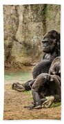 Cross River Pregnant Gorilla And Children Beach Towel