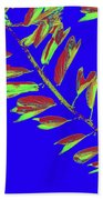 Crossing Branches10 Beach Towel