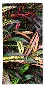 Croton 1 Beach Towel