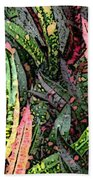 Croton 3 Beach Towel by Eikoni Images