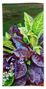 Crotons 2 Beach Towel