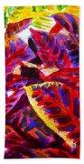 Crotons Sunlit 1 Beach Towel