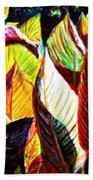 Crotons Sunlit 2 Beach Towel