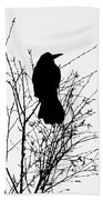 Crow Rook Perched In A Tree With Pare Branches In Winter Beach Towel