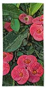 Crown Of Thorns Delight Beach Towel