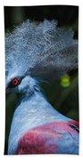 Crowned Pigeon Beach Towel