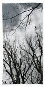 Crows In Cottonwoods Beach Towel