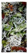 Crushed Lichen Beach Towel