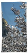 Crystal Capitol Beach Towel