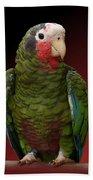 Cuban Amazon Parrot Beach Towel