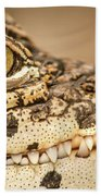 Cuban Croc Smile Beach Towel