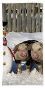 Curious Piglets And Snowman Beach Towel