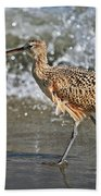 Curlew And Tides Beach Towel