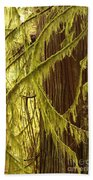 Curves In The Rainforest Beach Towel