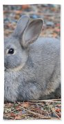 Cute Campground Rabbit Beach Towel
