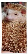 Cute Little Hedge Ball Beach Towel