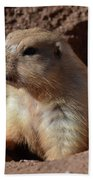 Cute Prairie Dog Climbing Out Of A Hole Beach Towel