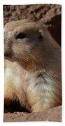 Cute Prairie Dog Climbing Out Of A Hole Beach Towel