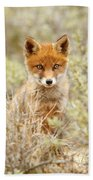 Cute Red Fox Kit Beach Towel