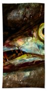 Cutlassfish Eyes Beach Towel