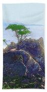 Cypress At Carmel Beach Towel