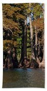 Cypress Grove Five Beach Towel