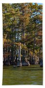 Cypress Grove Four Beach Towel