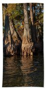 Cypress Grove Two Beach Towel