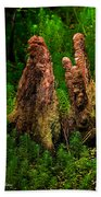 Cypress Knees Beach Towel