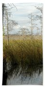 Cypress Landscape Beach Towel