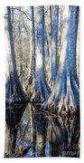 Cypress Reflection Beach Towel