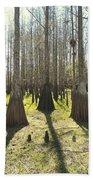 Cypress Sentinals Beach Towel