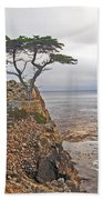 Cypress Tree At Pebble Beach Beach Towel