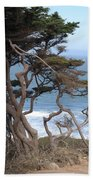 Cypress On The Cliff 15 Beach Towel