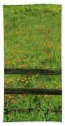 D7b6306 Fence And Poppies Beach Towel