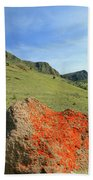 Da5872 Lichen Covered Rock Below Abert Rim Beach Towel