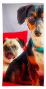 Dachshund Dog, Pug Dog, Good Time On Bed Beach Towel