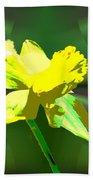 Daffodil Delight Beach Towel