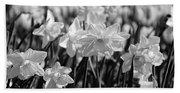 Daffodil Glow Monochrome By Kaye Menner Beach Sheet