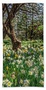 Daffodil Hill Gardens Beach Towel